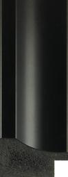 POL-1101