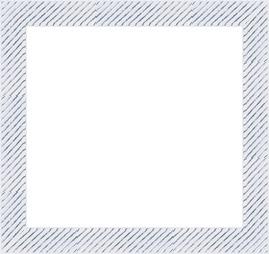 POL-1291