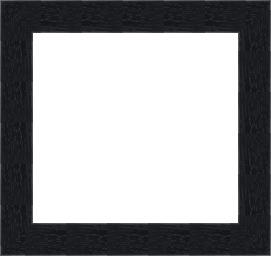 POL-4985